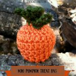 Free Crochet Pattern - Mini Pumpkin Treat Bag from Designing Crochet by Amanda Saladin